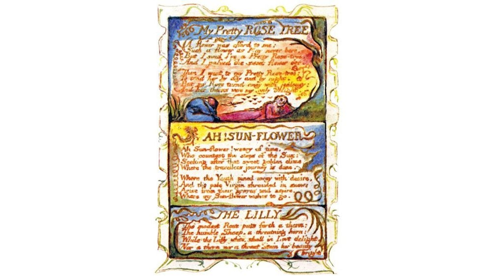Written copy of My Pretty Rose Tree with illustration of a woman lying beneath